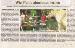 gelnh-tageblatt-15-7-14